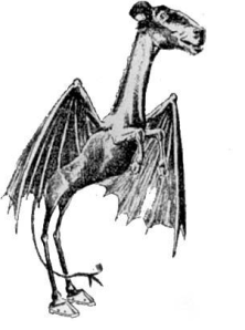 Meet (supposedly) The Jersey Devil